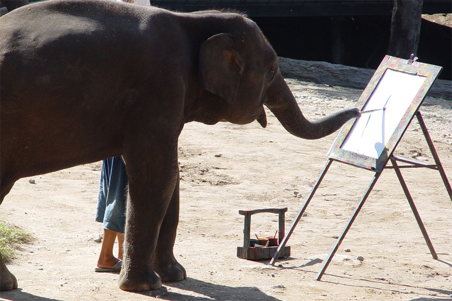 Elephant painting a picture
